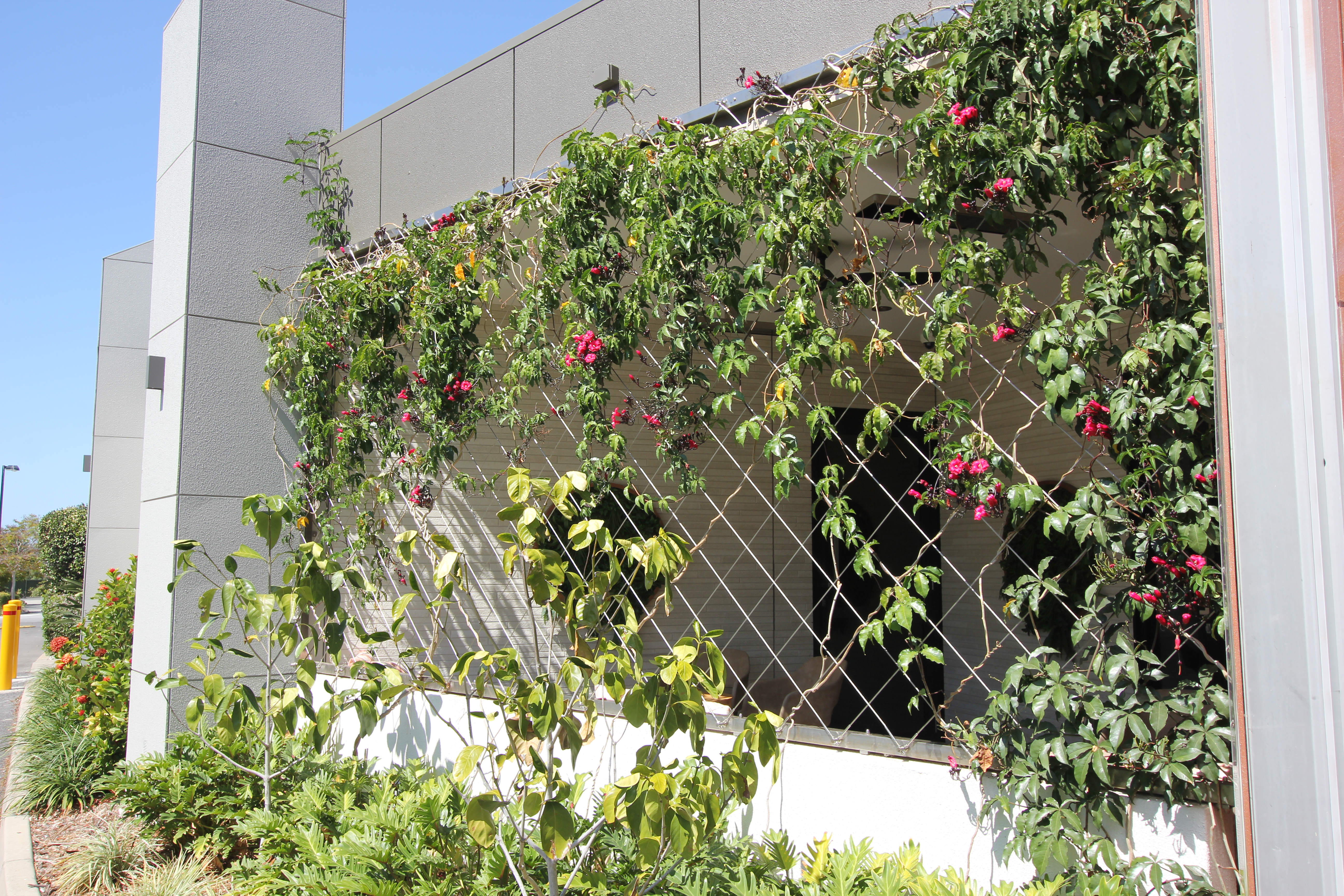 Robina_Green_Wall_Stainless_Steel81