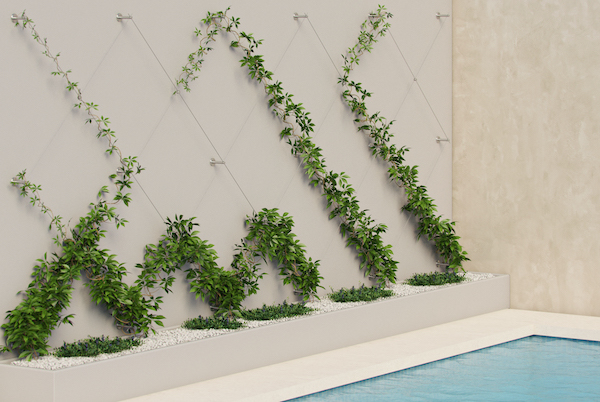 pool_scene_2-green-wall-compressed